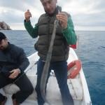 Ali Bagci (4)