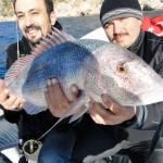 Balık Avı Turu