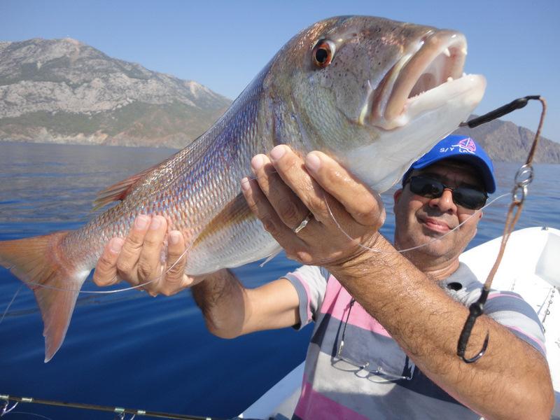 Teknede Balık Avı Yöntemleri